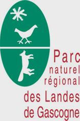logo_pnr parc naturel régional des landes de gascogne Parc Naturel Régional des Landes de Gascogne logo pnr