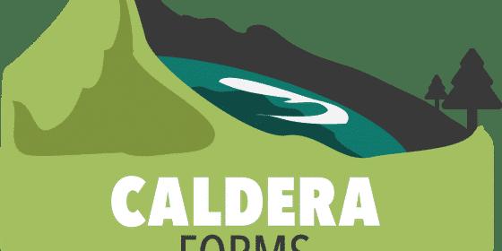 Construisez des formulaires puissants avec Caldera Forms 4