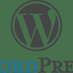 30% des sites internet sont créés sous WordPress